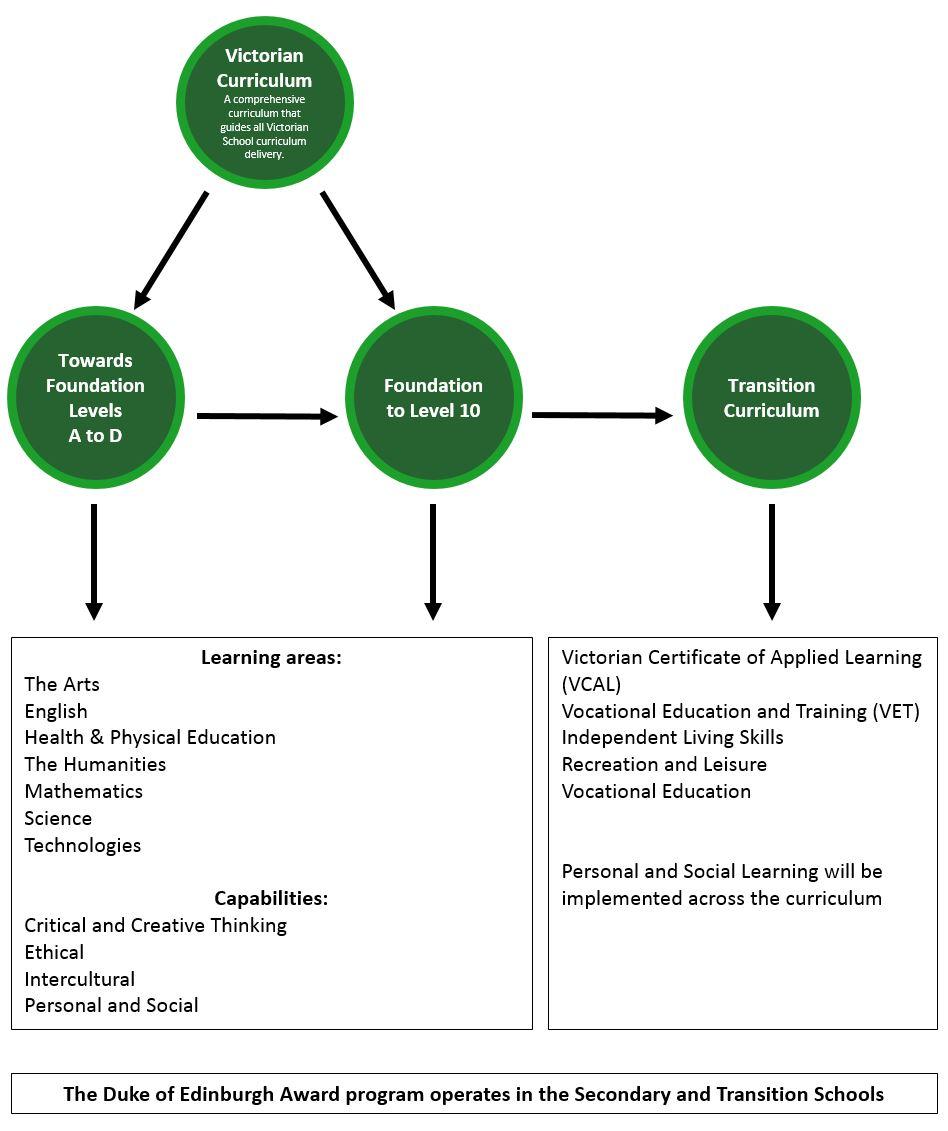 curriculum-diagram